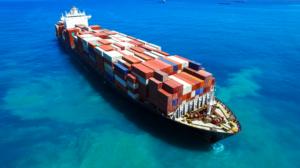 Lees meer over het artikel Oorlog over octrooi zeevracht rozen nog niet voorbij – Hortipoint